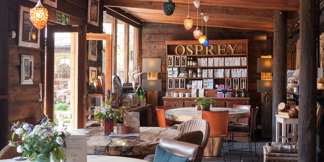 osprey-london-saddlery-cafe-st-albans-1200x600