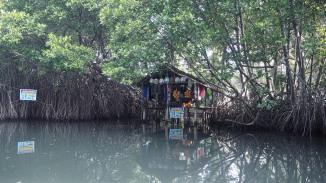 Baba Yaga's hut...?