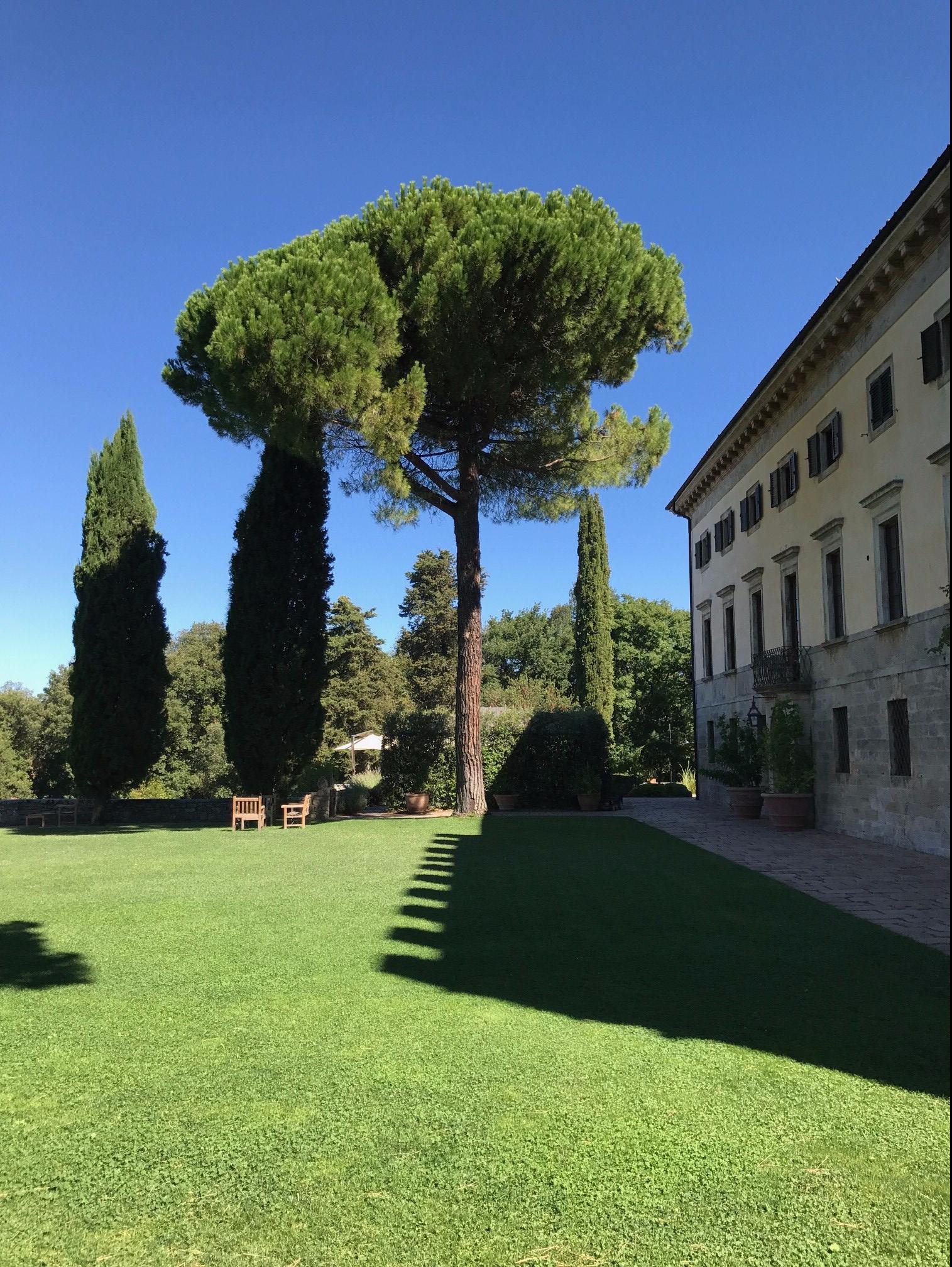 Front Lawn Borgo Pignano